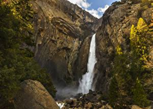 Bilder Vereinigte Staaten Park Wasserfall Steine Yosemite Felsen Fichten