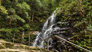 Bilder Australien Park Wasserfall Wälder Sydney Felsen Zaun Sylvia falls Blue Mountains Natur