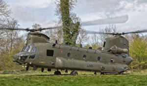 Sfondi desktop Boeing Elicotteri Vertol CH-47 HC.4 Chinook ZA713-14 Aviazione