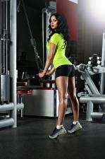 Fotos Fitness Brünette Trainieren Starren Schöner Mädchens Sport