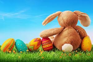 Фотография Праздники Кролик Яйцами Траве