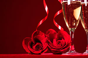 Pictures Holidays Roses Sparkling wine Red background Red Two Stemware Flowers