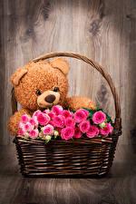 Hintergrundbilder Rose Teddybär Weidenkorb Rosa Farbe Blumen