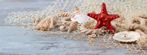 Hintergrundbilder Seesterne Muscheln Perlen
