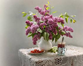 Hintergrundbilder Stillleben Syringa Tee Grauer Hintergrund Trinkglas Tisch Kanne Blumen