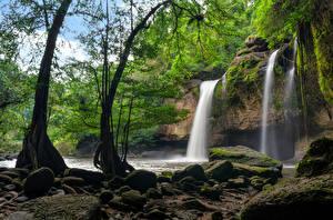 Sfondi desktop Thailandia Parco Cascate Pietre Il dirupo Alberi Muschio Heo Suwat Waterfall Khao Yai National Park Natura