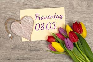 Fotos Tulpen 8 März Herz Deutsch Blumen