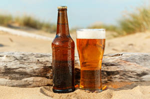 Pictures Beer Bottle Highball glass Foam Food