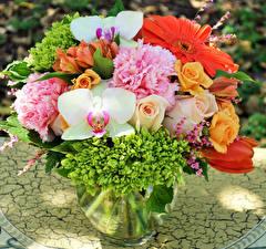 Hintergrundbilder Sträuße Rose Orchidee Pfingstrosen Gerbera Vase Blüte