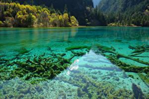 Hintergrundbilder China Jiuzhaigou park Park See Natur