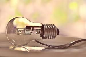 Picture Closeup Light bulb Fork
