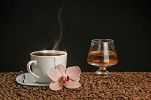 Pictures Coffee Alcoholic drink Orchid Black background Cup Vapor Grain Stemware