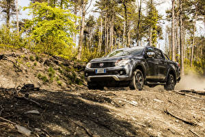 Hintergrundbilder Fiat Pick-up Grau 2016 Fullback Double Cab auto