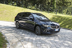 Images Fiat Black Metallic 2016 Tipo Station Wagon Cars