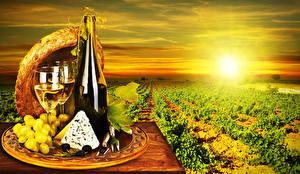 Fotos Felder Morgendämmerung und Sonnenuntergang Wein Weintraube Käse Flaschen Weinglas Der Hut Lebensmittel