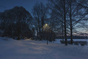 Image Finland Winter Evening Snow Street lights Trees Tampere Nature