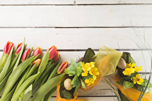 Pictures Holidays Easter Tulips Primula Wood planks Eggs