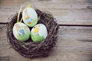Bilder Feiertage Ostern Bretter Nest Ei Design