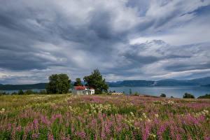 Hintergrundbilder Norwegen Fluss Gebäude Himmel Felder Natur