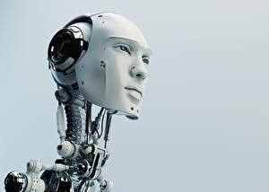 Wallpapers Robot Head Gray background Face Staring Nature