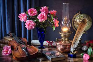 Fotos Stillleben Kamelien Petroleumlampe Violine Federn Vase Brille Buch Blüte
