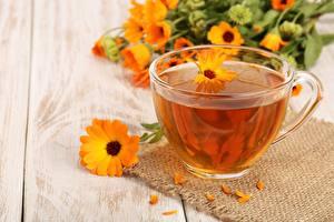 Fotos Tee Kamillen Tasse Untertasse Lebensmittel