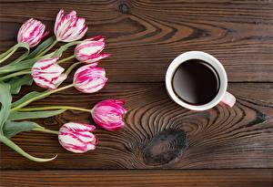 Bilder Tulpen Kaffee Bretter Blumen