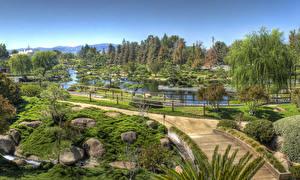 Bilder Vereinigte Staaten Park Teich Steine Los Angeles Design Bäume Strauch Natur