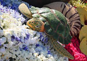 Hintergrundbilder Vereinigte Staaten Park Rosen Schildkröten Kalifornien Design Pasadena Natur