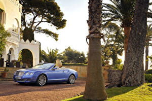 Bilder Bentley Cabrio Metallisch Luxus 2009 Continental GTC Speed