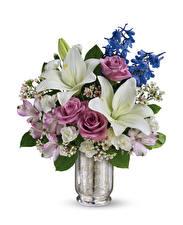 Hintergrundbilder Blumensträuße Lilien Alstroemeria Rosen Weißer hintergrund Vase Blumen