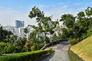Bakgrundsbilder på skrivbordet Kina Hus Träd Buskar Macao stad