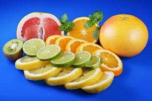 Fotos Zitrusfrüchte Apfelsine Zitrone Grapefruit Chinesische Stachelbeere Farbigen hintergrund Geschnitten