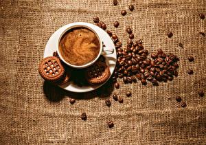 Bilder Getränke Kaffee Kekse Farbigen hintergrund Tasse Getreide Lebensmittel