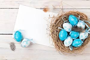 Fotos Ostern Eier Nest Vorlage Grußkarte