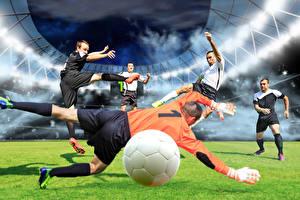 Fotos Fußball Mann Torwart Ball Rasen Sprung Sport