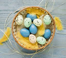Fotos Feiertage Ostern Federn Bretter Eier Nest