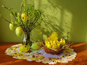 Hintergrundbilder Feiertage Ostern Küken Eier Nest