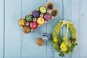 Bilder Feiertage Ostern Kücken Bretter Ei Mehrfarbige Design Nest