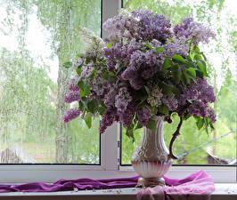 Fotos Flieder Blumensträuße Fenster Vase Blumen