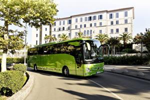 Fotos Mercedes-Benz Omnibus Gelbgrüne 2017 Tourismo M-2 RHD