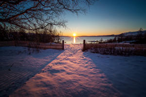 Image Norway Sunrise and sunset Winter Snow Fence Sun Branches Sulitjelma Nature