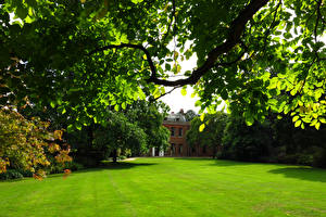 Hintergrundbilder Park Rasen Ast Capel Manor Gardens Natur
