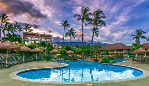 Photo Spa town Building Hawaii Swimming bath Palm trees Maui Cities