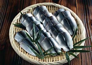 Bilder Meeresfrüchte Fische - Lebensmittel Teller Lebensmittel