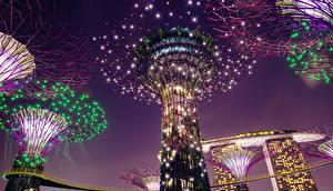 壁纸、、シンガポール、公園、デザイン、クリスマスライト、夜、Gardens by the Bay、自然、自然