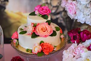 Hintergrundbilder Süßware Torte Rosen Design