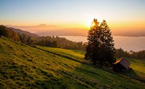 Fotos Schweiz Landschaftsfotografie Sonnenaufgänge und Sonnenuntergänge Haus Grünland Fichten Zugerberg Natur