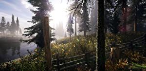 Fotos USA Flusse Park Fichten Baumstamm Zaun Montana Natur