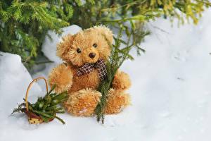 Fotos Winter Teddybär Schnee Weidenkorb